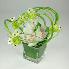 Création florale Ornithogalum