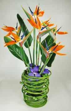 Composition florale de strelitzia oiseaux du paradis for Livraison composition florale