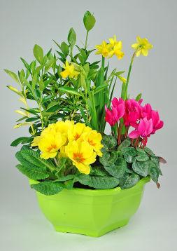 Coupe fleurie Fête des Grand-mères