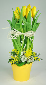 Bouquet de tulipes pour p ques printemps livraison fleurs for Livraison tulipes